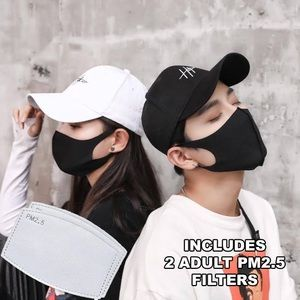 high quality two layer face mask + 2 filters
